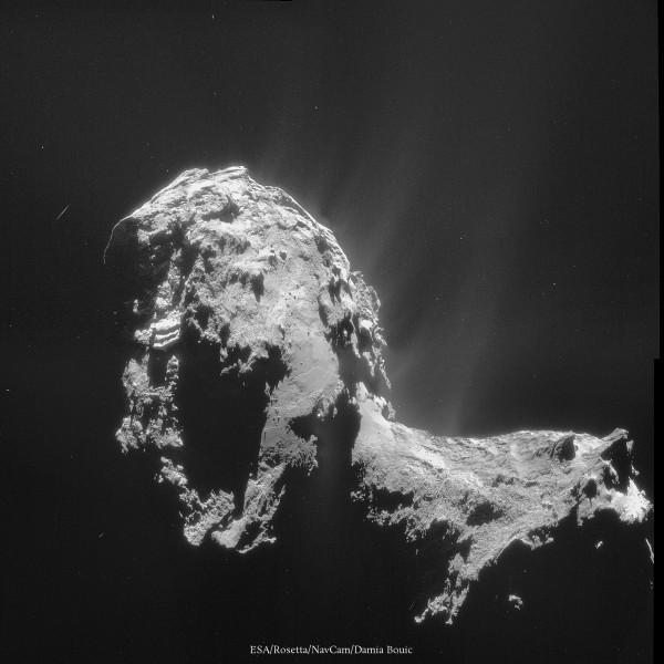 20 Novembre 2014 - Image datant du même jour, avec un angle différent, qui montre un nombre impressionnant de jets. C'est confirmé : Churyumov-Gerasimenko se réveille !